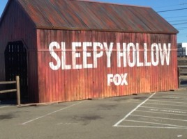 sleepy hollow fox petco interactive zone